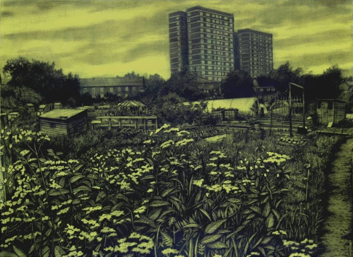 Allotment (Toxic Yellow) 2017 80 x 100cm Gouache and carbon on paper